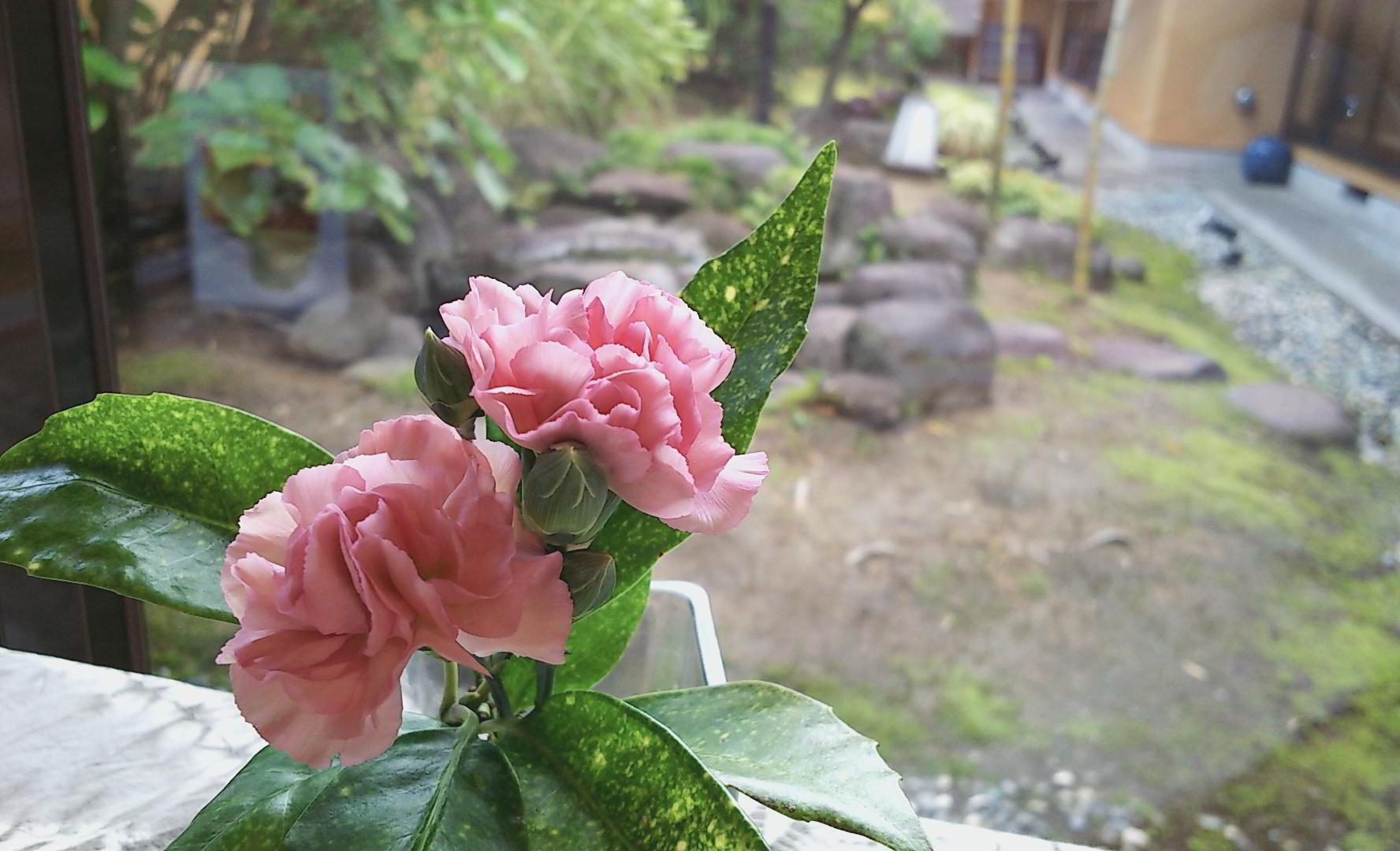 http://www.tomihiro.co.jp/blog/2019/09/12/IMG_20190912_103230283.jpg